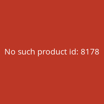 Anycubic Mega Pro 3D-Drucker